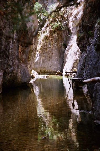 Mares Forest Creek, Wombeyan Caves